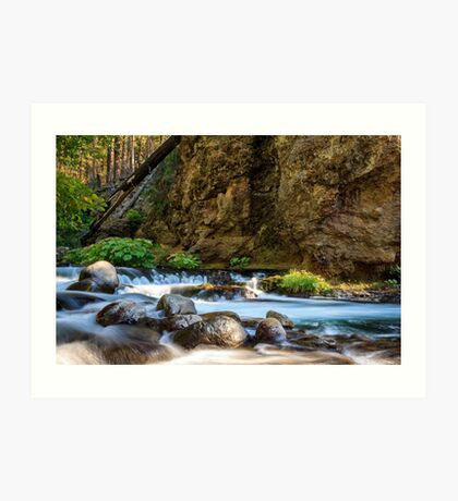 Deer Creek Art Print