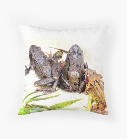 The Interloper Throw Pillow