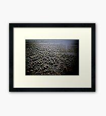 Sand Pellets  Framed Print