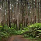 Survivors - Marysville - The HDR Experience by Philip Johnson