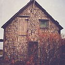 She Created Stories About Abandoned Houses by OLIVIA JOY STCLAIRE