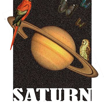 Saturn by dougnst