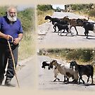 ....lives the lonely goatherd by dunawori