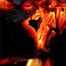 Fire Heart by dedakota