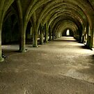 The Undercroft, Fountains Abbey by hans p olsen