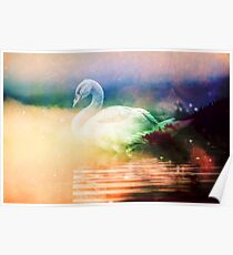 Forest Nature Animals - Wild Swan Lake Poster