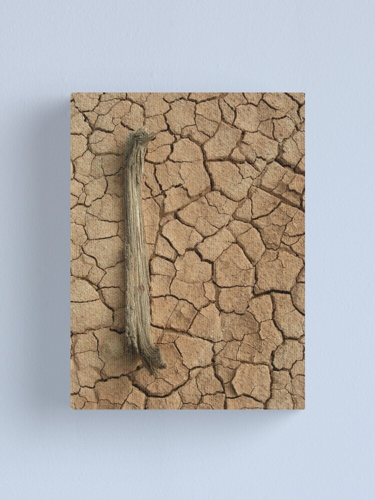 Alternate view of All Dried Up Canvas Print