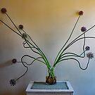 Leeks in Vase. by geof