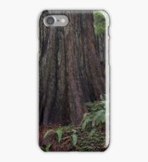In the redwoods I iPhone Case/Skin