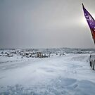 Oceti Sakowin - Standing Rock by Michael Treloar