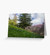 Spring is here Greeting Card