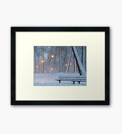 Winter walk in the park Framed Print