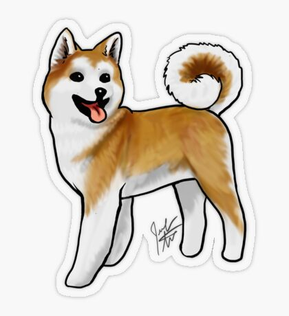 Akita Transparent Sticker