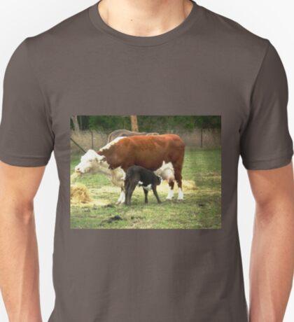 Heaven eating hay & Halo at the milk bar T-Shirt