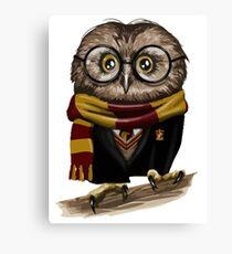 Owly Potter Canvas Print