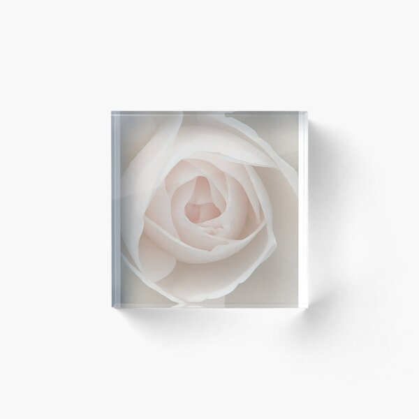 Painted Rose Acrylic Block