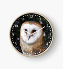 Bright Eyed Owl - number dial Clock