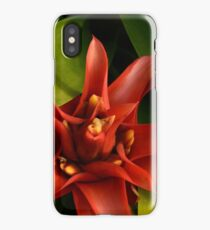 red & green  iPhone Case