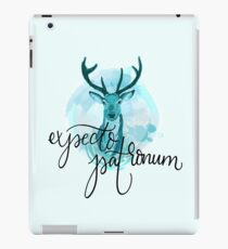 Blue Stag Spell Illustration iPad Case/Skin