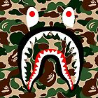 BAPE SHARK WOODLAND CAMO by binbaz