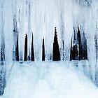 Ice Age 2 by Imi Koetz