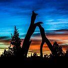 Sunset#12/Redmond by Richard Bozarth