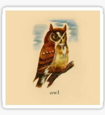 O is for Owl Sticker