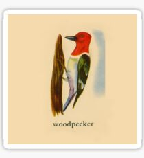 W is for Woodpecker Sticker