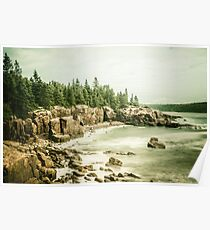 Ocean Forest Sea Water - Rocky Beach in Acadia National Park Maine Poster