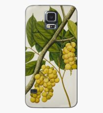 Vintage Grapes Case/Skin for Samsung Galaxy