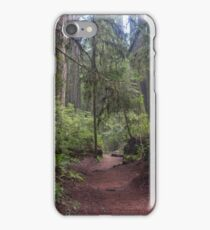 In the Redwoods II iPhone Case/Skin