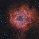 Rosette Nebula in LHaRGB by Jeff Johnson