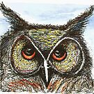 Anni's Owl by Anni Morris
