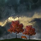 4384 by peter holme III