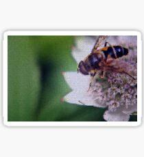 Macro Drone Flower B Sticker