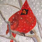 A Cardinal Winter by AngieDavies