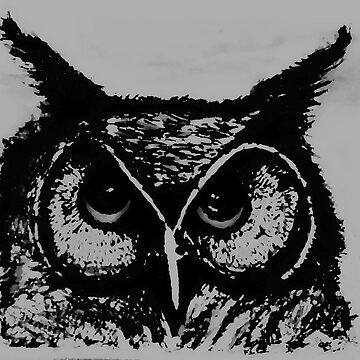 Night Owl by anni