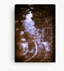 Forest Wanderlust - Adventure Road Trip in Purple Fog Firefly Canvas Print