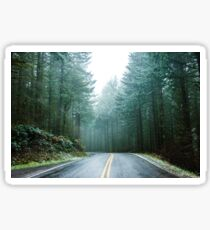 Forest Road Trip - Foggy Day Fir Trees Pacific Northwest Adventure Sticker