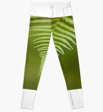Green All Over Leggings