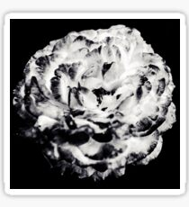 Floral Flower Art - Retro Rose Black and White Vintage Flowers Sticker