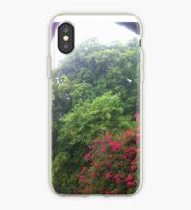 Sun Shower, Trees, Bougainvillea Tree,  iPhone Case