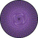 Phyllotaxis_016 by Rupert Russell