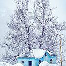 Little Blue House by Svetlana Sewell