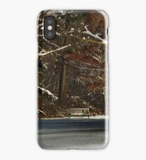 Shade of Winter iPhone Case/Skin