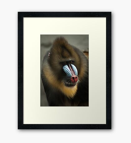 Talking to me, are you? - Praat je tegen mij? Framed Print