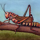 Cricket by Brian Hargreaves