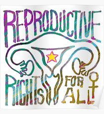 REPRODUCTIVE rights for ALL Poster