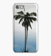 Evening Roost iPhone Case/Skin