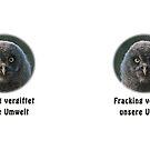 Hilfloser kleiner Bartkauz by Thomas F. Gehrke